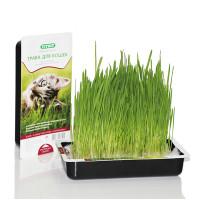 Titbit Трава для кошек Овес 40г