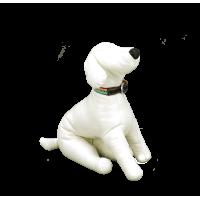 YUGI Ошейник для собак кожаный на цветной подкладке 1,9*35см